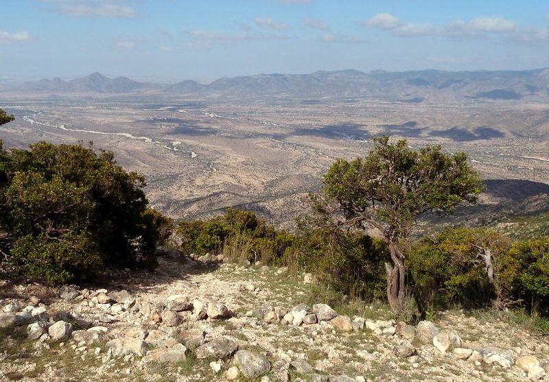 Ga'an Libah View
