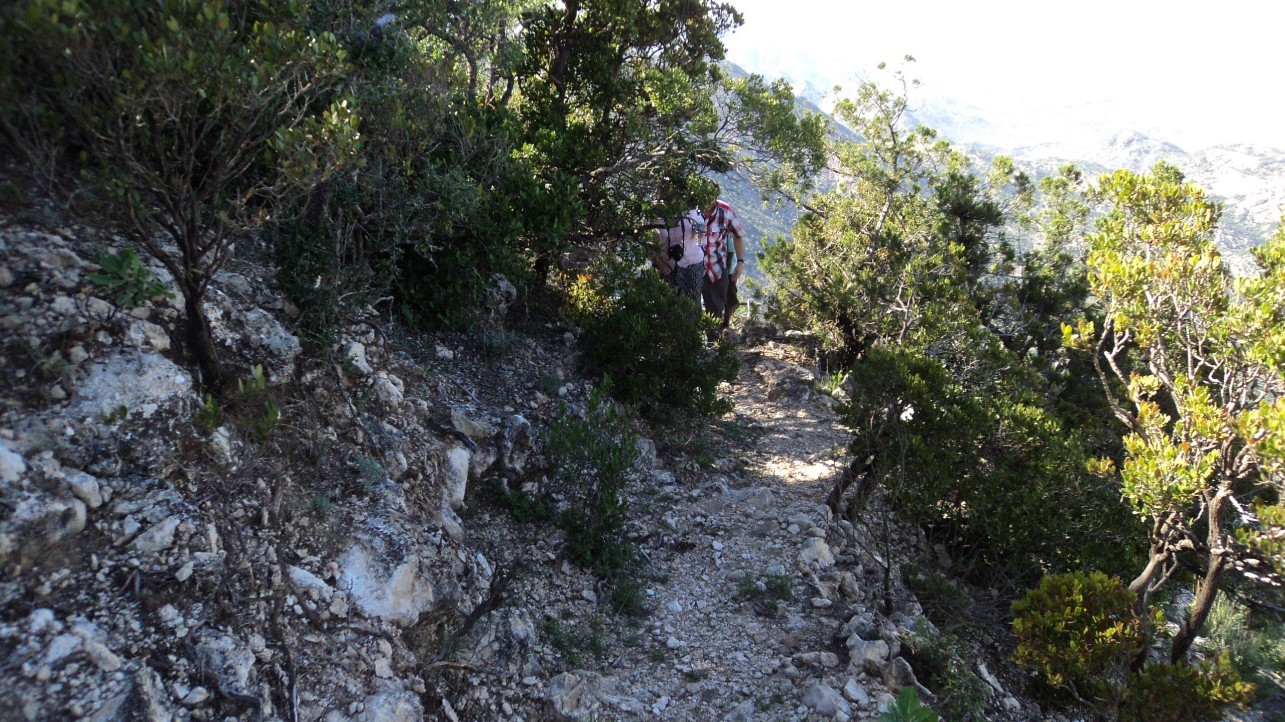 Mount Wagar
